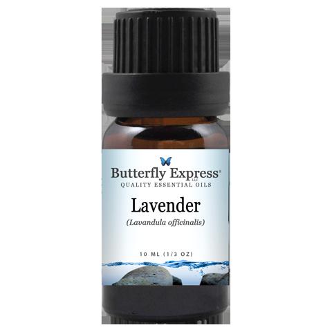 Lavender Officinalis Essential Oil