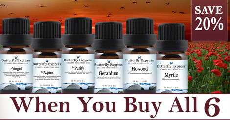 6 Oil Monthly Special