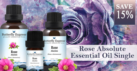 Save 15% on Rose Absolute
