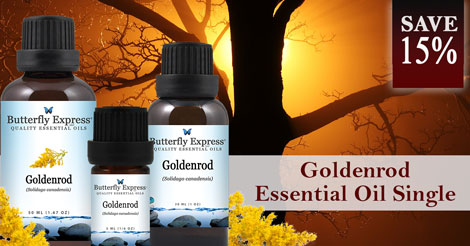 Save 15% on Goldenrod