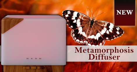 New Metamorphosis Diffuser