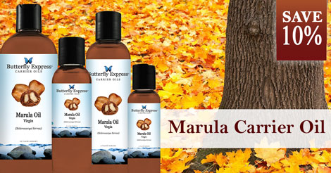 Save 10% on Marula Carrier Oil