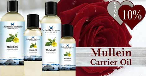 Save 10% on Mullein Carrier Oil