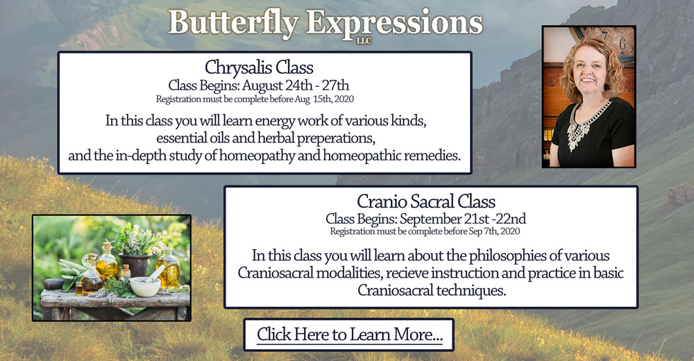 Chrysalis Class