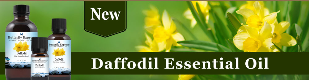 Daffodil is the New Oil