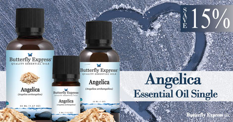 Save 15% on Angelica