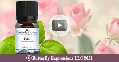 Basil Essential Oil Blend
