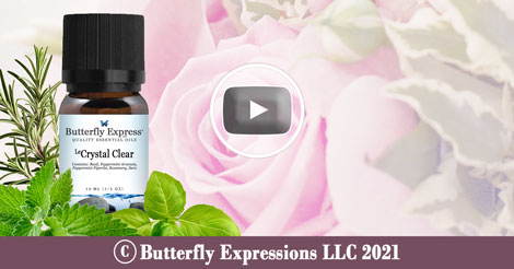 Crystal Clear Essential Oil Blend